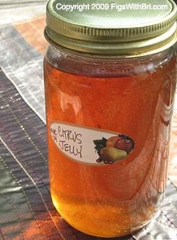 Meyer Lemon & Navel Orange Citrus Jelly