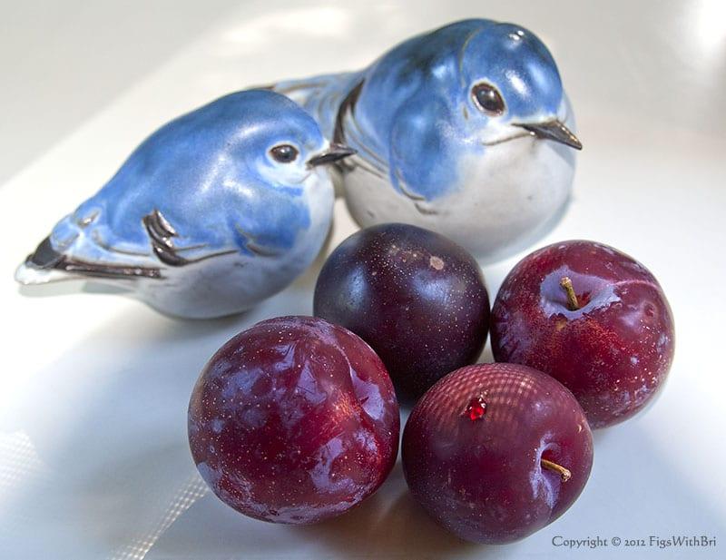 ripe santa rosa plums with bluebird ceramic sculptures