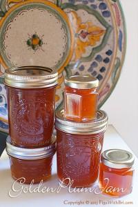 golden plum-apricot jam in jars